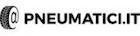 Pneumatici.it logo